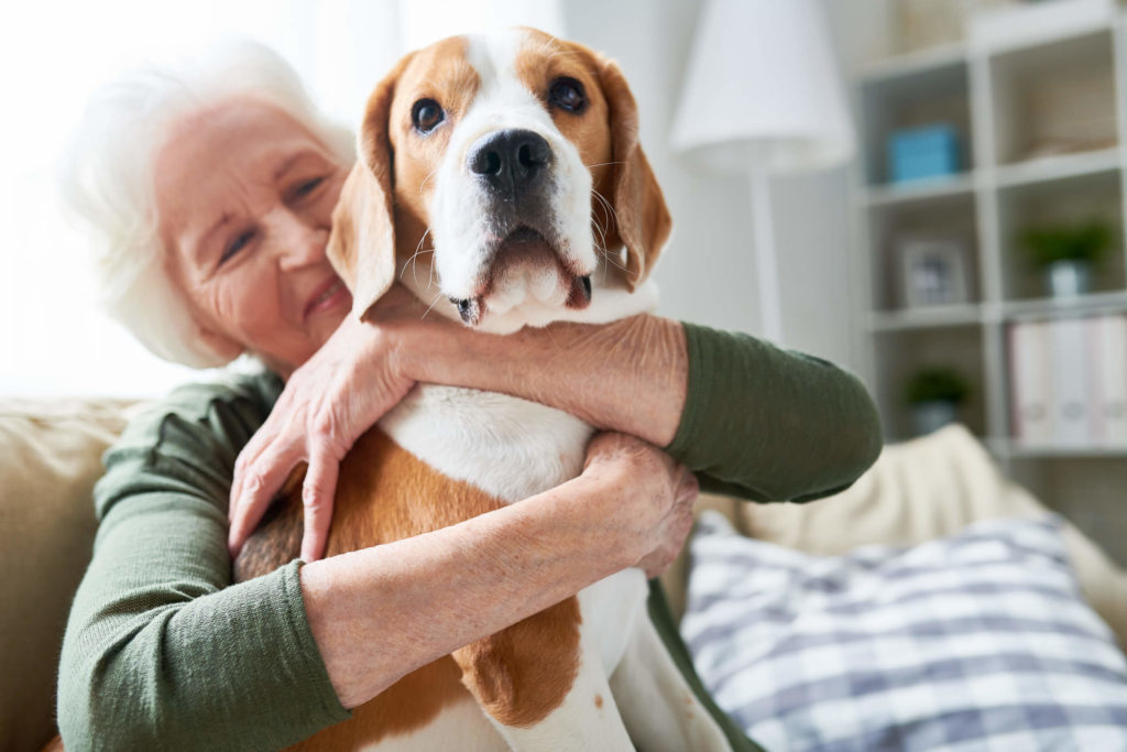 Elder, pets can help with loneliness